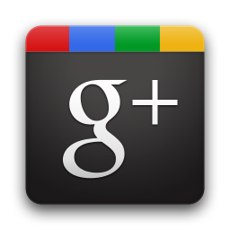 google plus mma miami